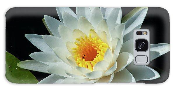 White Pond Lily Galaxy Case