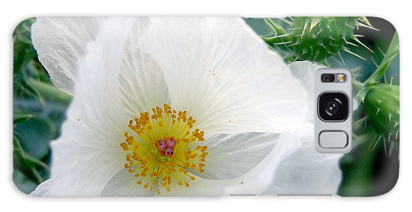 White Prickly Poppy Galaxy Case