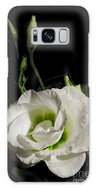 White Rose On Black Galaxy Case