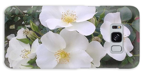 White Roses Bloom Galaxy Case