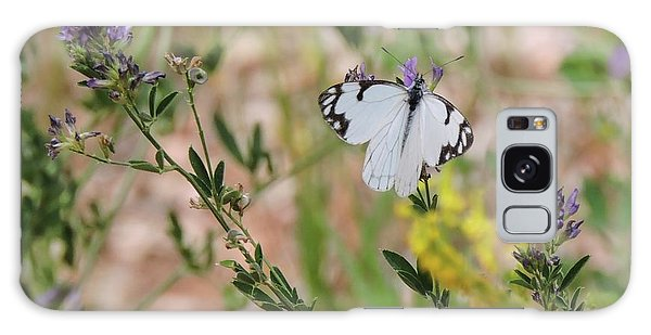 White-skipper On Lupine Galaxy Case