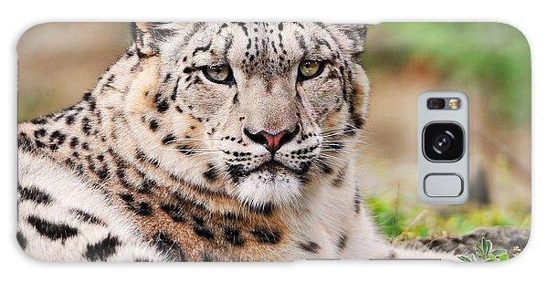 White Snow Leopard Galaxy Case