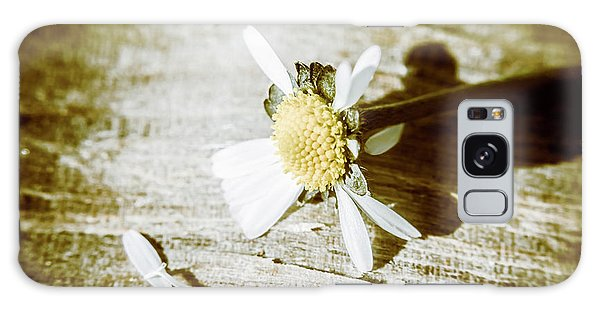Close Up Galaxy Case - White Summer Daisy Denuded Of Its Petals by Jorgo Photography - Wall Art Gallery