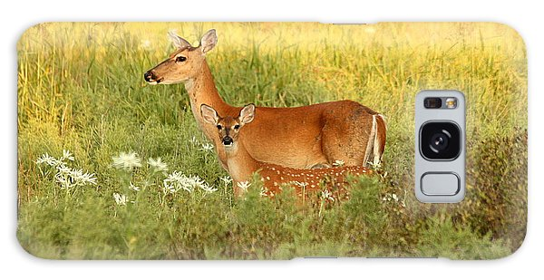 White-tail Doe And Fawn In Meadow Galaxy Case