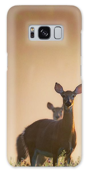 Sunrise Galaxy Case - White-tailed Deer 2016 by Bill Wakeley