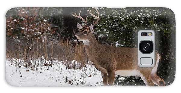 White-tailed Deer - 8904 Galaxy Case