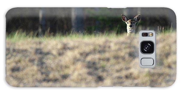 White Tailed Deer Calverton New York Galaxy Case