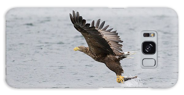 White-tailed Eagle Catching Dinner Galaxy Case