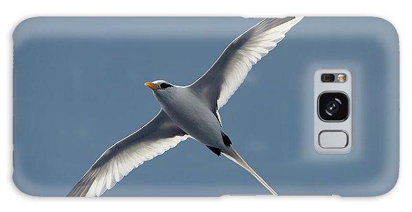 White-tailed Tropicbird Galaxy Case
