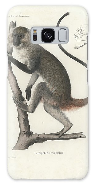 White Throated Guenon, Cercopithecus Albogularis Erythrarchus Galaxy Case by J D L Franz Wagner