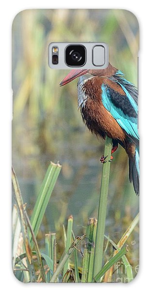 White-throated Kingfisher 13 Galaxy Case