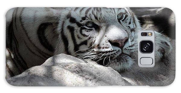 White Tiger Contiplation Galaxy Case