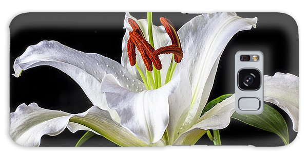Lily Galaxy Case - White Tiger Lily Still Life by Garry Gay