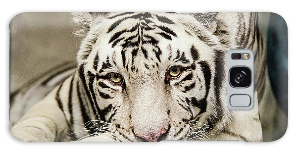 White Tiger Looking At You Galaxy Case