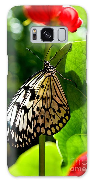 White Tree Nymph Butterfly 1 Galaxy Case