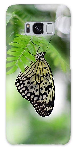 White Tree Nymph Butterfly 2 Galaxy Case by Marie Hicks