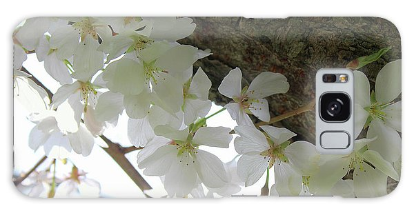 Dogwood Branch Galaxy Case