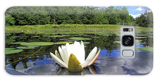 White Waterlily On A Lake Galaxy Case