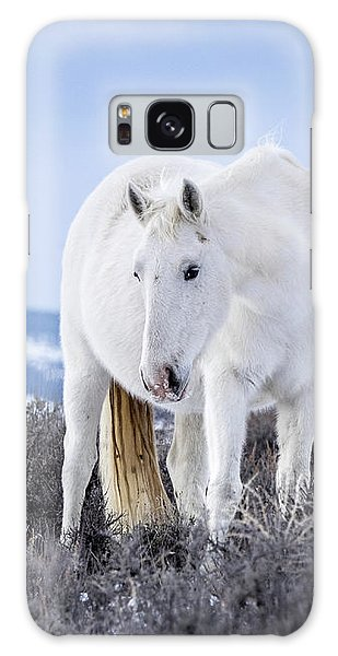 White Wild Horse Mystic Of Sand Wash Basin Galaxy Case