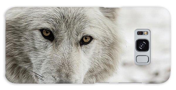 White Wolf II Galaxy Case