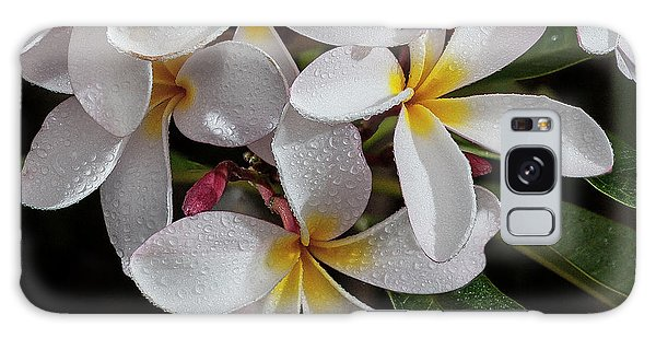 White/yellow Plumerias In Bloom Galaxy Case