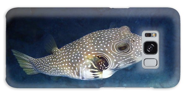 Whitespotted Pufferfish Closeup Galaxy Case