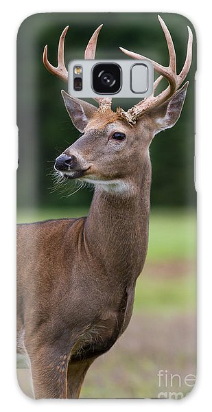 Whitetail Deer Buck Galaxy Case