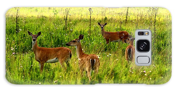 Whitetail Deer Family Galaxy Case by Barbara Bowen