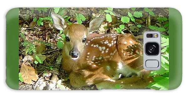 Whitetail Fawn II Galaxy Case