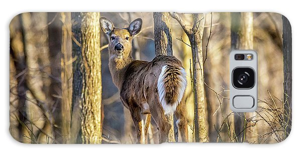 Whitetail Winter Morning Galaxy Case