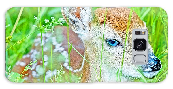Galaxy Case - Whitetailed Deer Fawn by A Gurmankin