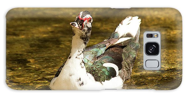 Who Me Wildlife Art By Kaylyn Franks Galaxy Case