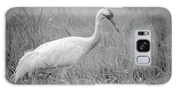 Whooping Crane 2017-4 Galaxy Case by Thomas Young