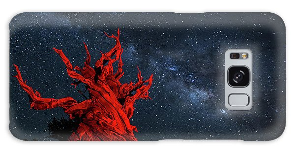 Wicked Galaxy Case