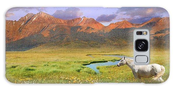 Patina Galaxy Case - Wide World Of Abundance, Wild Horse by R christopher Vest