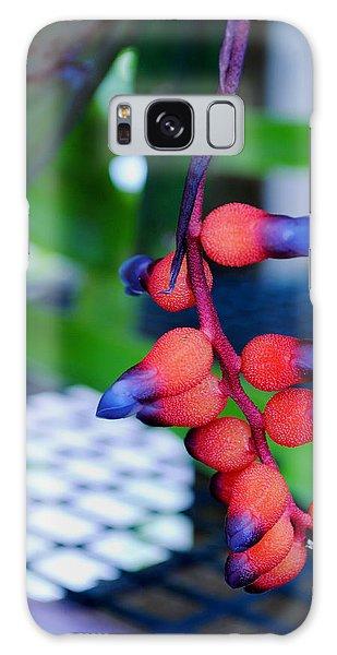 Wild About Bromeliads2 Galaxy Case