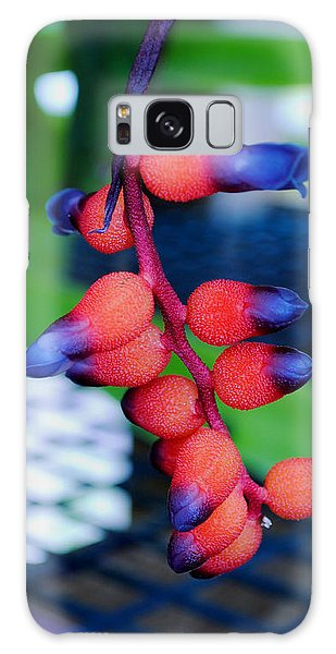 Galaxy Case featuring the photograph Wild About Bromeliads2 by Kate Word