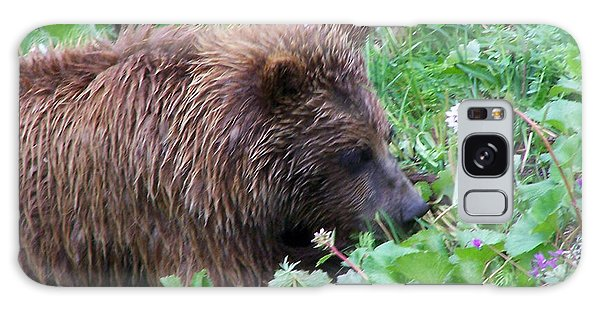 Wild Bear Eating Berries  Galaxy Case by Kathy  White