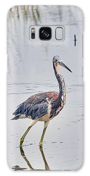 Wild Birds - Tricolored Heron Galaxy Case