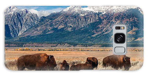 Wild Bison On The Open Range Galaxy Case