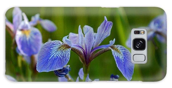 Wild Blue Iris Galaxy Case