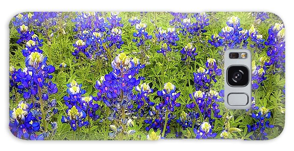 Wild Bluebonnets Blooming Galaxy Case