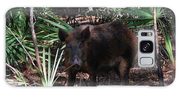 Wild Boar I Galaxy Case