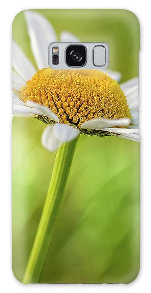 Wild Daisy Galaxy Case