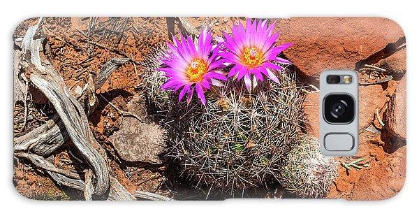Wild Eyed Cactus Galaxy Case