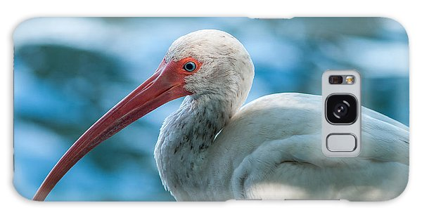 Wild Eyed Ibis Galaxy Case