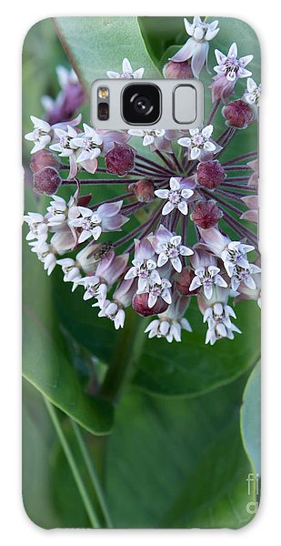 Wild Flower Star Burst Galaxy Case