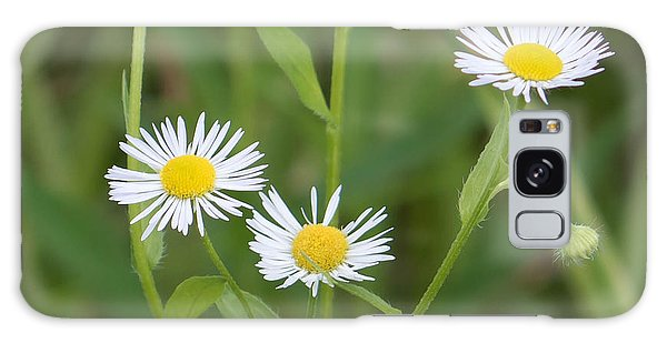 Wild Flower Sunny Side Up Galaxy Case