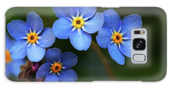 Wild Flower Forget-me-not Since The Middle Ages Symbolizes The Celestial Eye And Reminds You Of God Galaxy Case