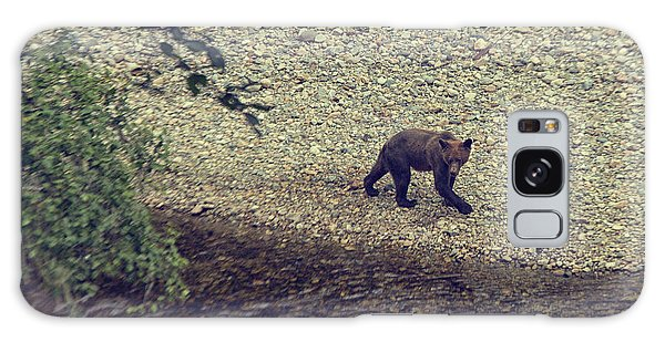 Wild Grizzly Bear Galaxy Case by Patricia Hofmeester